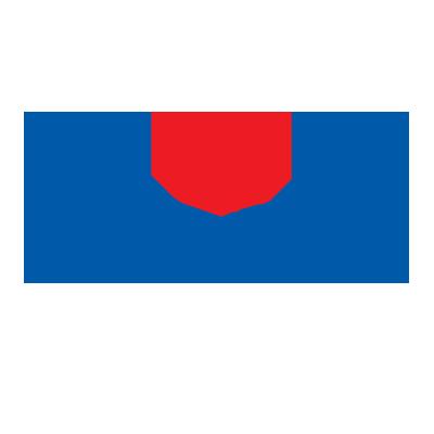 suzuki namur